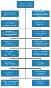 организациона шема 1