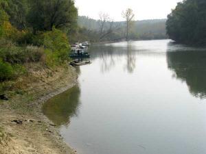 Река тамиш у Јабуци слика 2