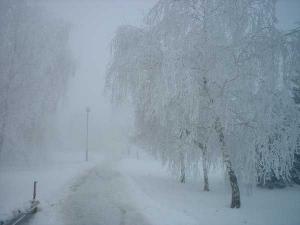 Park zimi u Glogonju