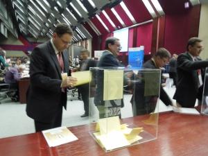 gradonacelnik panceva prilikom glasanja
