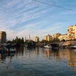 река Тамиш