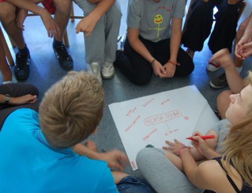 Јавни позив  за  чланове/ице Тима за евалуацију Стратегије бриге о младима града Панчева 2014-2017.