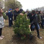 """Акција """"Засади дрво"""""""